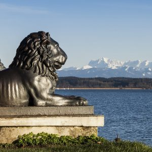 Tutzing lion head